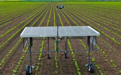 El fin de los herbicidas está cerca, gracias a estos robots anti malas hierbas