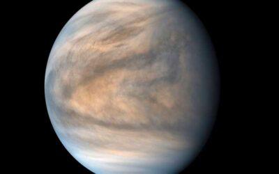 Descubren indicios de vida en la atmósfera de Venus