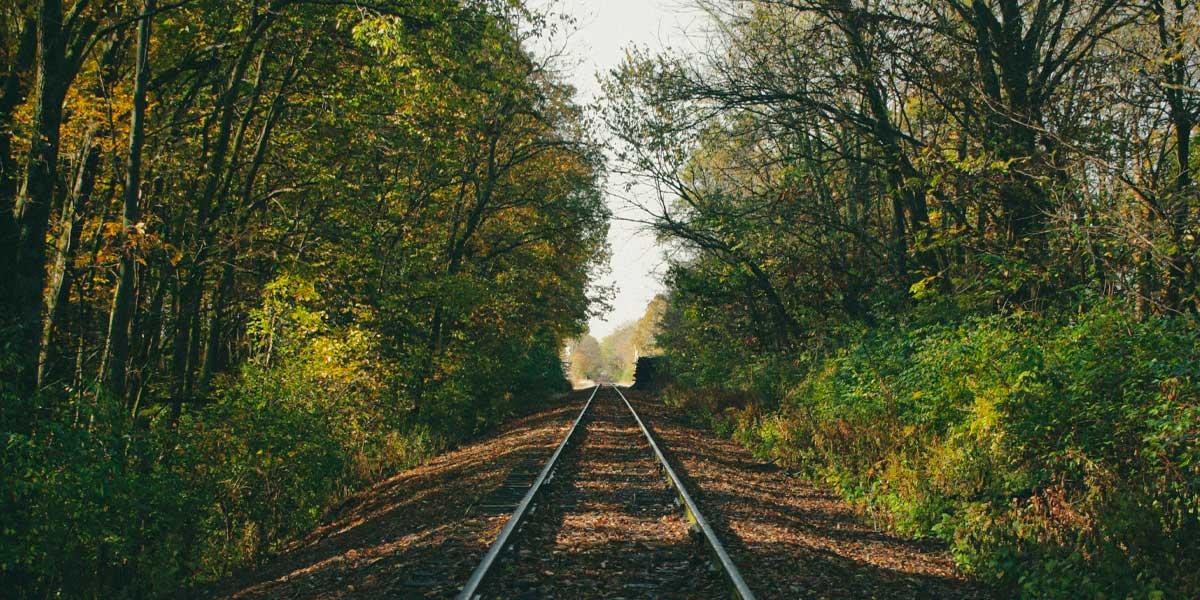 El inminente tren sustentable obtendrá energía a partir de residuos