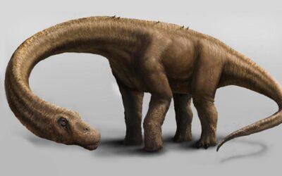 Descubren el titanosaurio más antiguo del mundo en la Patagonia