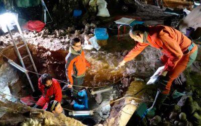 Histórico hallazgo de ADN nuclear neandertal en Burgos