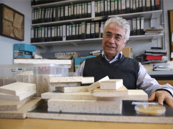 Alireza Kharazipour, jefe del grupo de investigación